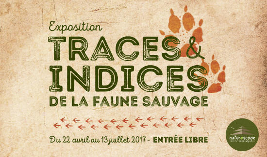 Exposition Indices et traces