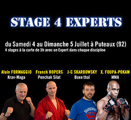 Stage-4-experts