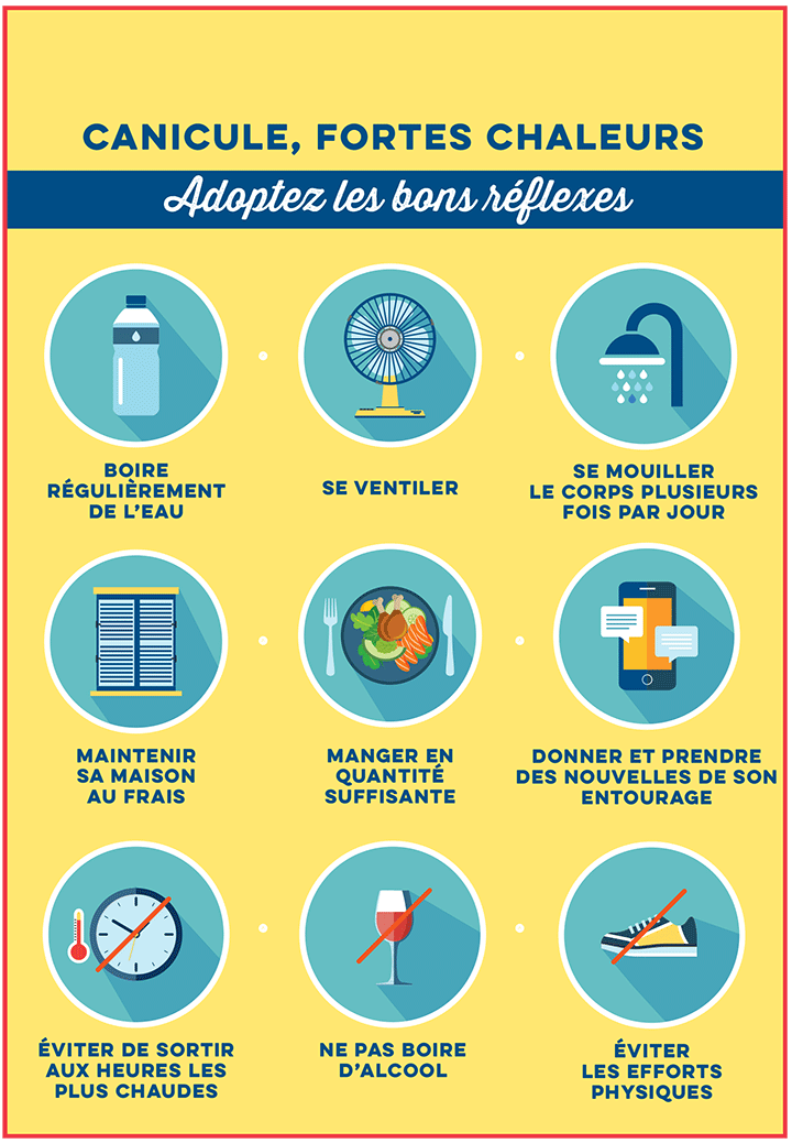 infographie canicule