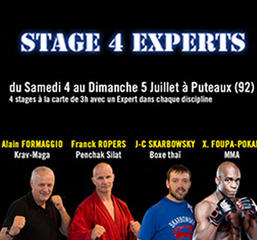 Stage d'arts martiaux par 4 Experts