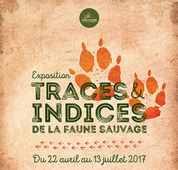 Exposition Traces et indices